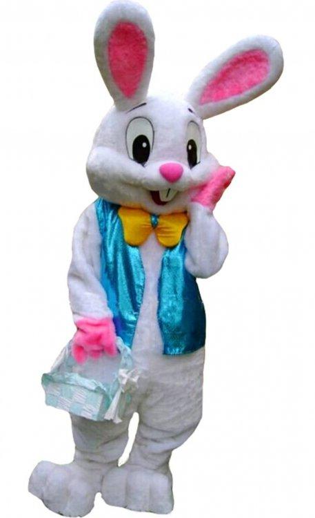 Easter Rabbit Costume